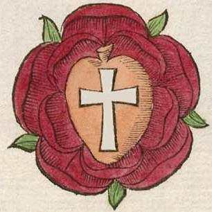 Cruce Rosea.1